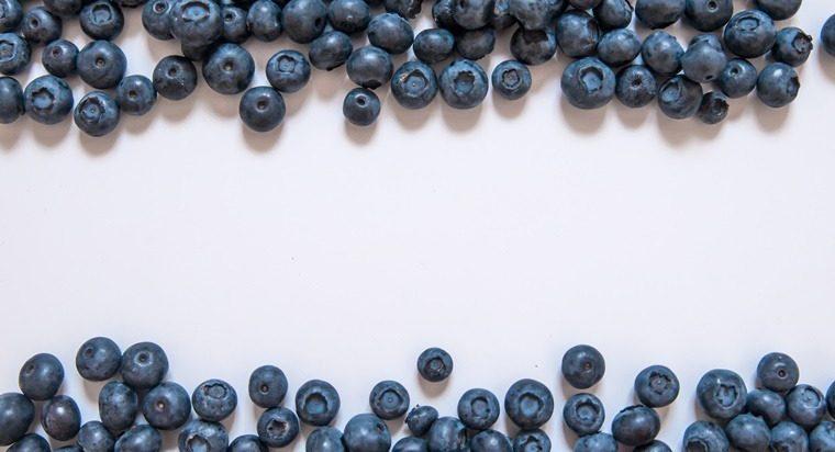mencegah-penuaan-dini-dengan-mengonsumsi-buah-blueberry
