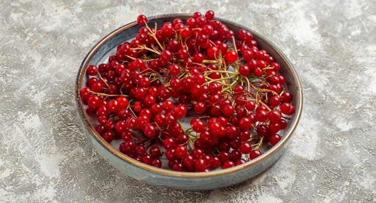 mencegah-penuaan-dini-dengan-mengonsumsi-buah-cranberry